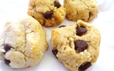Nourishing Recipe-Gluten Free Paleo Cookies