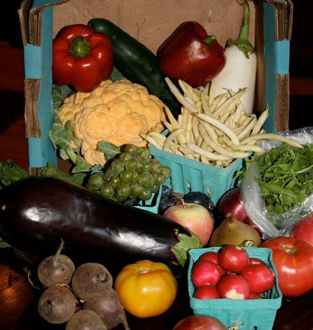 My Journey to being Gluten Free. Part 1